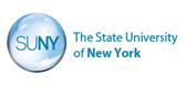 纽约州立大学
