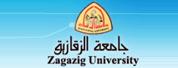 扎加齐克大学