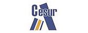 CESUR高等职业教育学院