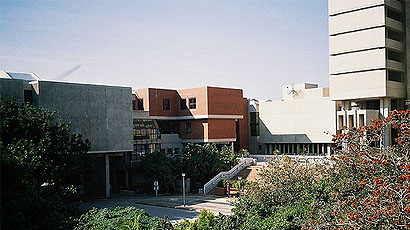 莱奥本矿业大学